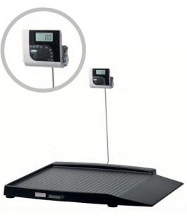 plataforma de pesaje